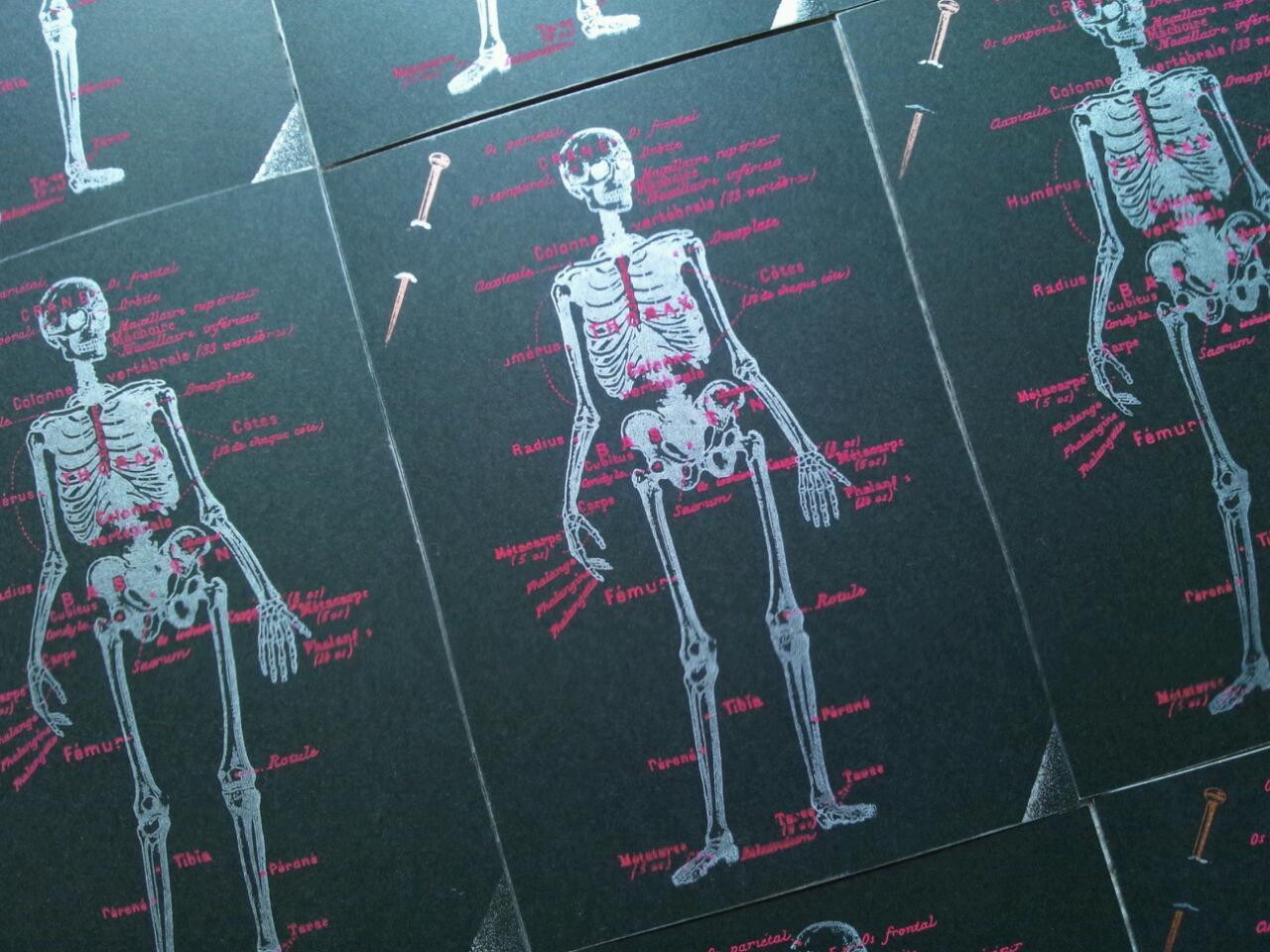 【Lykkelig】ポストカード「人体」入荷